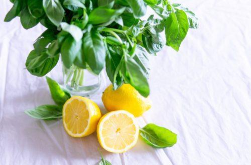 magyar citrom hétfejűsárkány